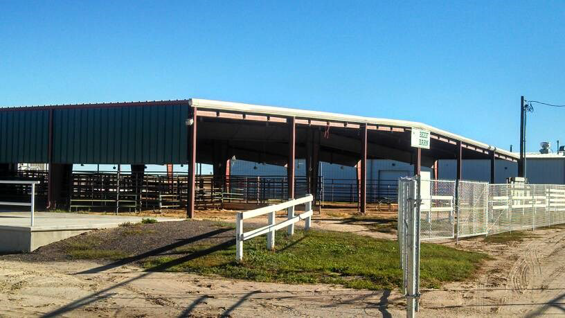 Elbert County Fairgrounds outdoor Beef Barn Pavilion